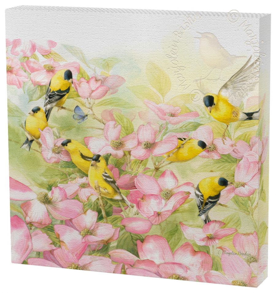 """Crowded Dogwood - 12"""" x 12"""" Gallery Wrapped Canvas"""