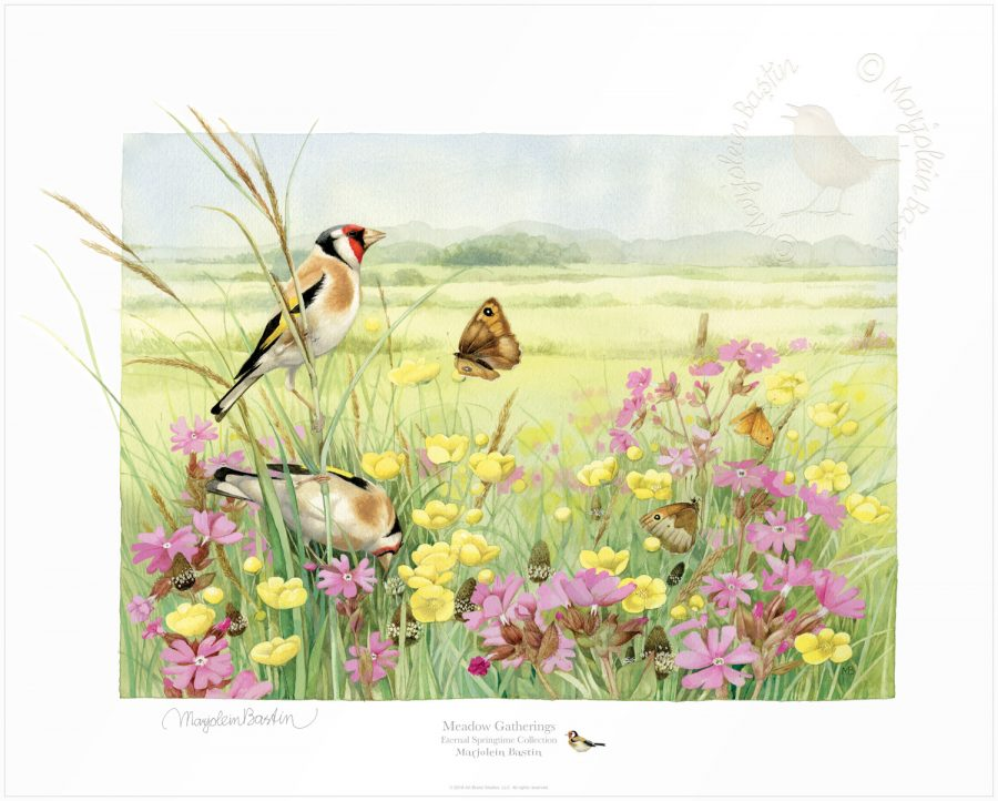 Meadow Gatherings - Limited Edition Paper