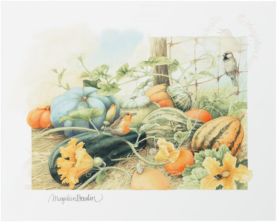 Pumpkins Aplenty - Limited Edition Paper