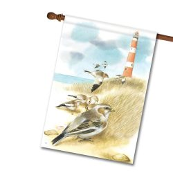 Marjolein Bastin New Lighthouse flag-National Lighthouse Day from Flagology
