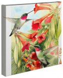 "Sweet Summer  - 14"" x 14"" - Gallery Wrap Canvas"