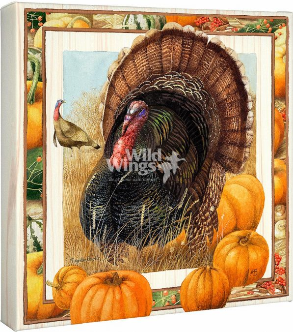 Proud Tom Turkey Canvas Gallery Wraps by Marjolein Bastin