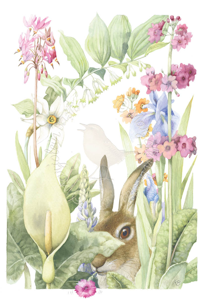 The hidden hare