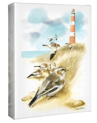 "Snow Buntings - 12"" X 9"" Gallery Wrapped Canvas"