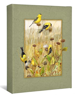 "Prairie Canaries - 12"" x 9"" Wrapped Canvas"
