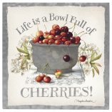 Life is a Bowl of Cherries 10 x 10 Metal Box Art