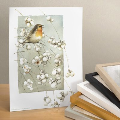 "European Robin Singing - 11"" X 14"" Art Print"