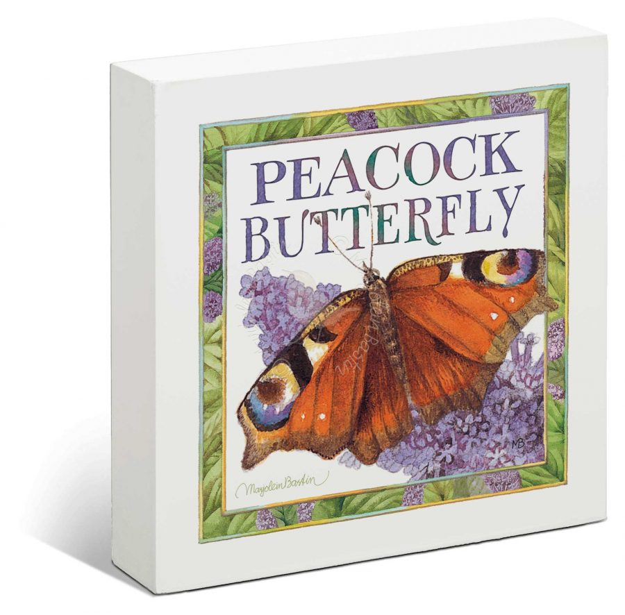 """Red Admiral Butterfly - 6"""" x 6"""" Box Art"""