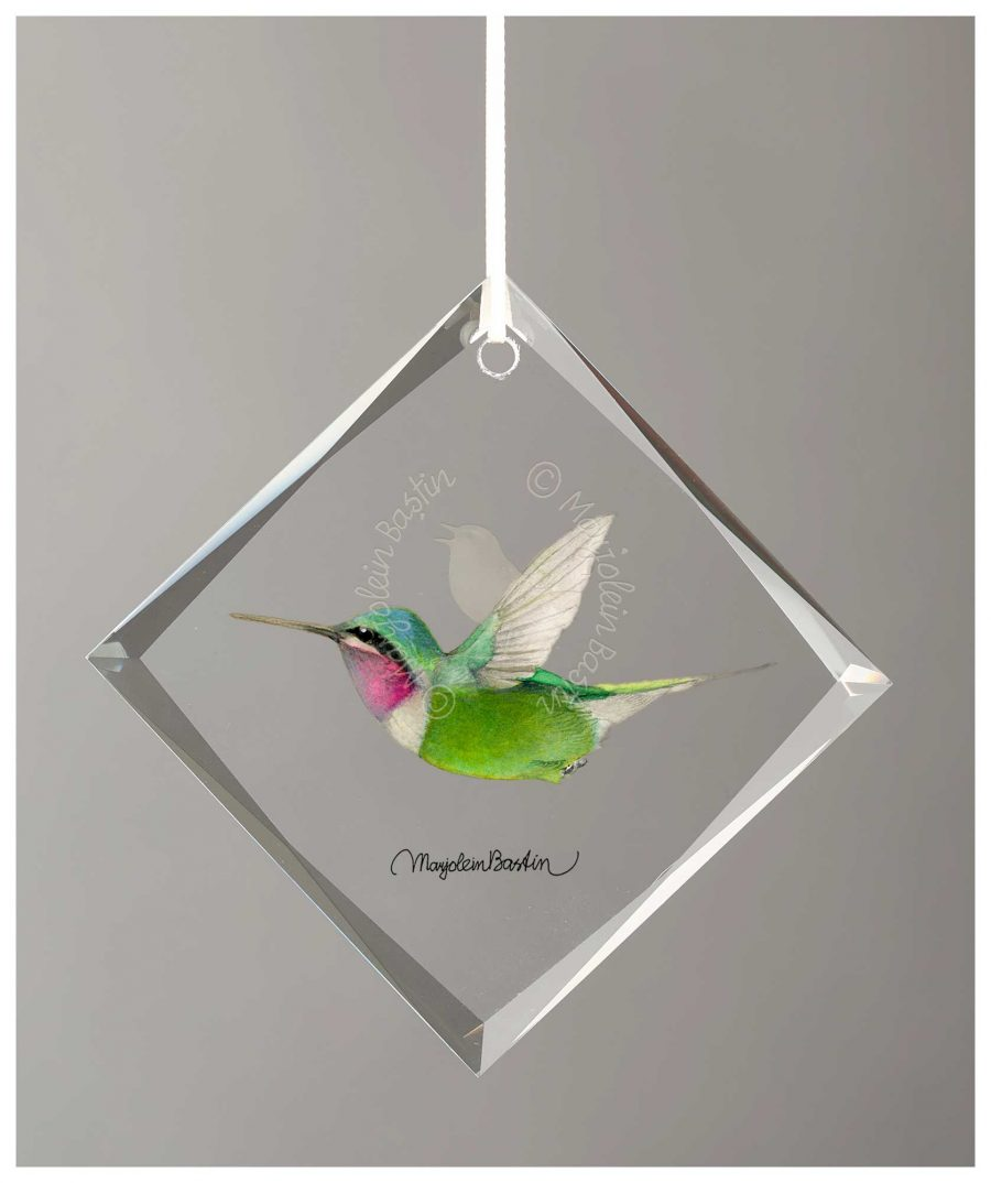 "Calliope Hummingbird - 4.5"" x 4.5"" Glass Ornament"