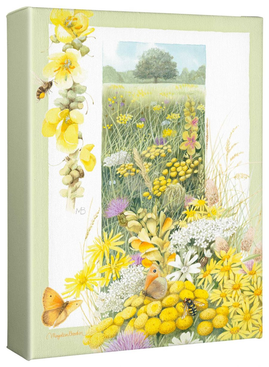 """A Healthy Meadow 12"""" x 9"""" Gallery Wrapped Canvas"""