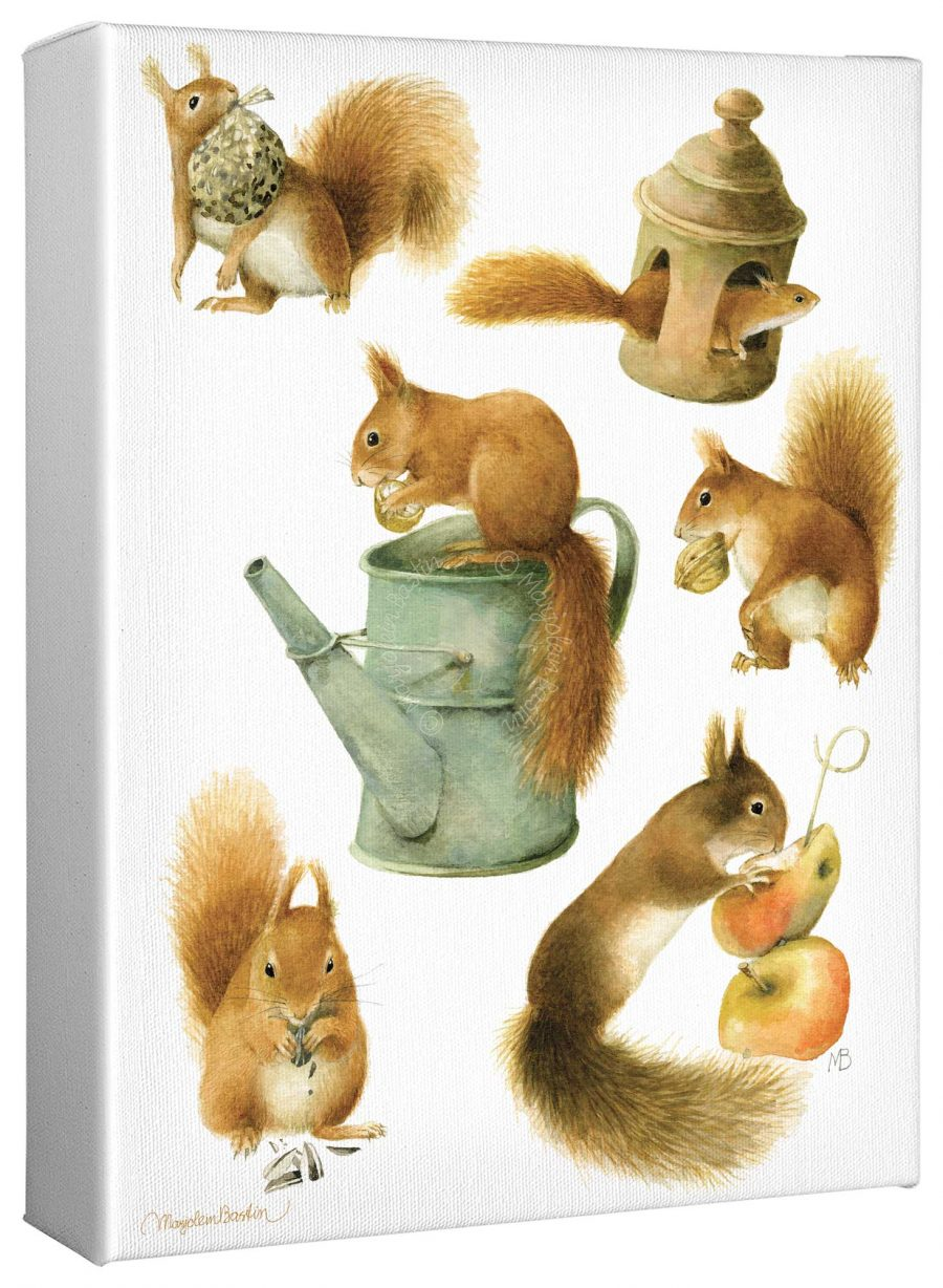 """Spoiled Squirrels 12"""" x 9"""" Gallery Wrapped Canvas"""