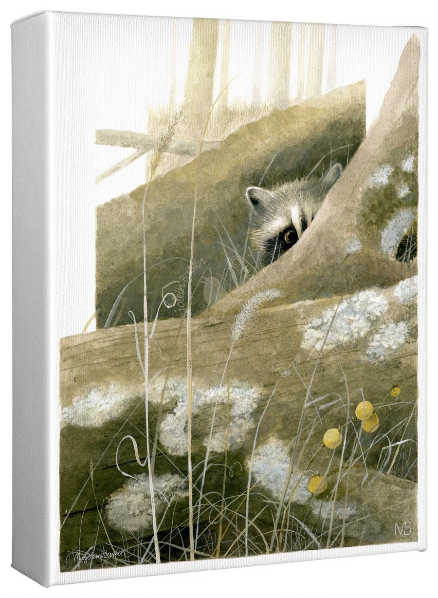 """Hide-and-Seek 12"""" x 9"""" Gallery Wrapped Canvas"""