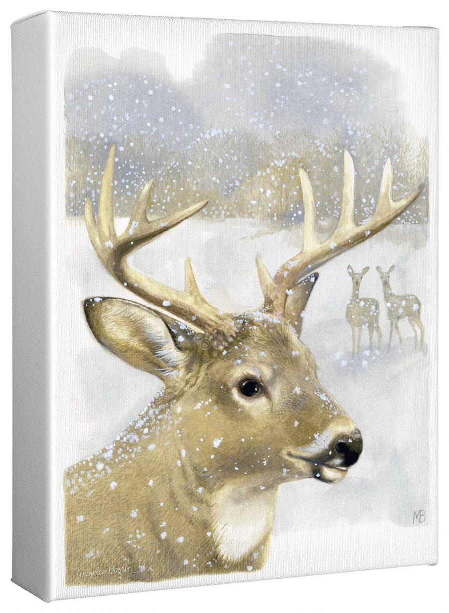 """Beautiful Buck 12"""" x 9"""" Gallery Wrapped Canvas"""